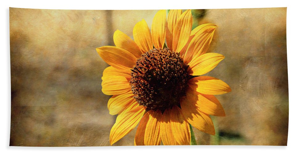 Sunflower Hand Towel featuring the photograph Sunflower With Texture by Shawn McMillan