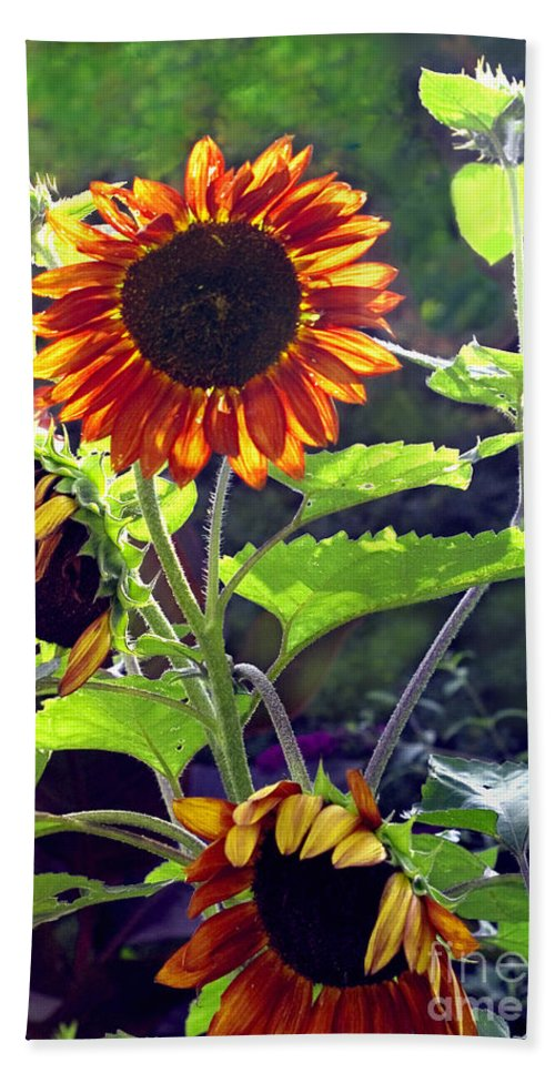 Nature Bath Sheet featuring the photograph Sunflowers In The Park by Madeline Ellis