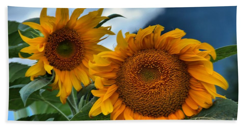 Sunflowers Bath Sheet featuring the photograph Sunflowers In The Wind by Adam Jewell