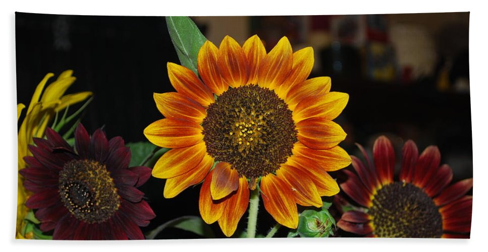 Squirrel Food Hand Towel featuring the photograph Sunflowers by Robert Floyd