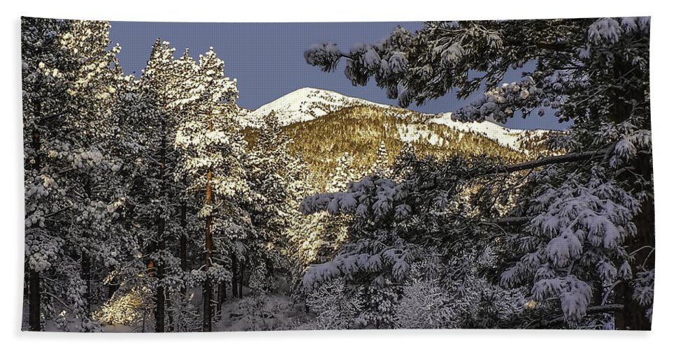 Landscape Hand Towel featuring the photograph Sunlit by Maria Coulson