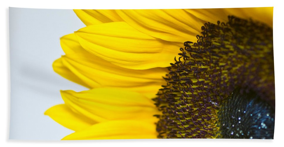 Flowers Hand Towel featuring the photograph Sunnier Than I by Sheila Laurens