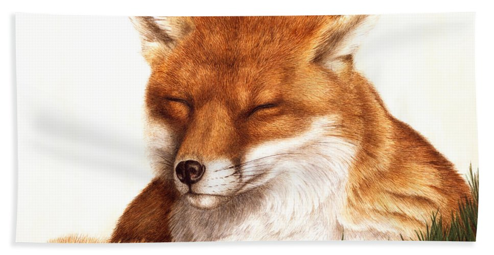 Fox Hand Towel featuring the painting Sunnin' Red Fox by Pat Erickson