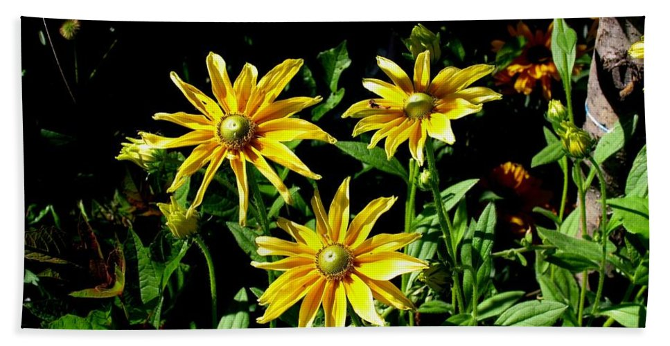 Nature Garden Photography Sunny Flower Yellow Art Photography Bath Sheet featuring the photograph Sunny Flowers by Galina Khlupina