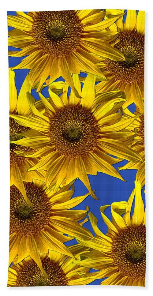 Sunflowers Bath Sheet featuring the photograph Sunny Gets Blue by John Haldane