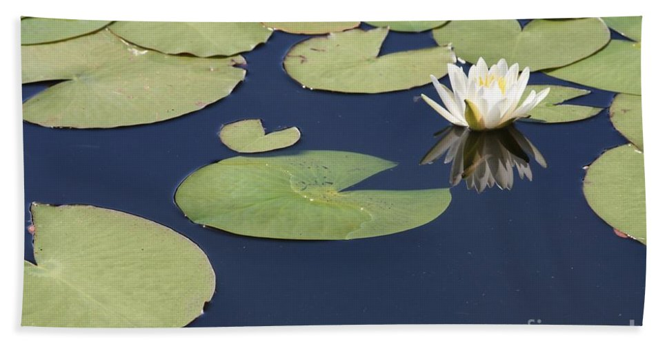 Lily Pond Hand Towel featuring the photograph Sunny Lily Pond by Carol Groenen