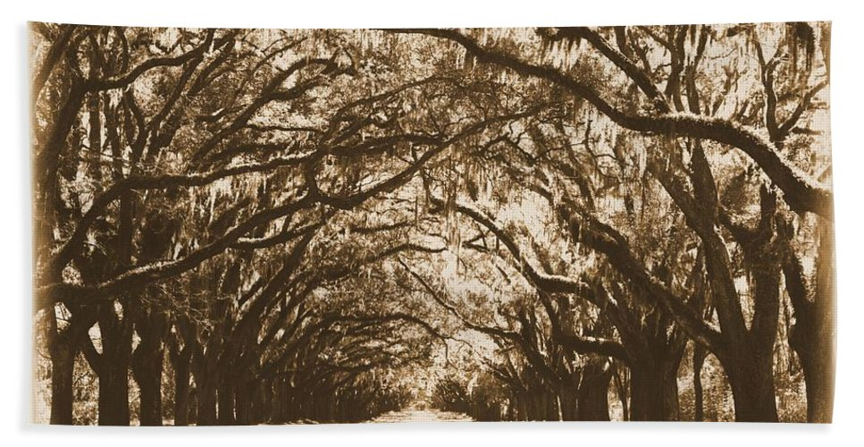 Savannah Bath Sheet featuring the photograph Sunny Southern Day With Old World Framing by Carol Groenen