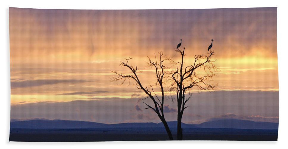 Africa Hand Towel featuring the photograph Sunrise And Rain by Michele Burgess