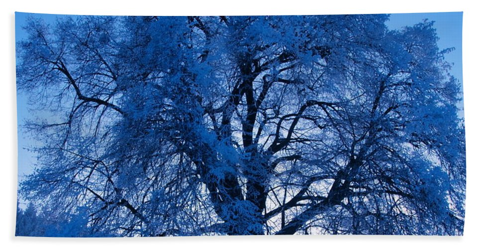 Tree Hand Towel featuring the photograph Sunrise And Tree by Roman Aj