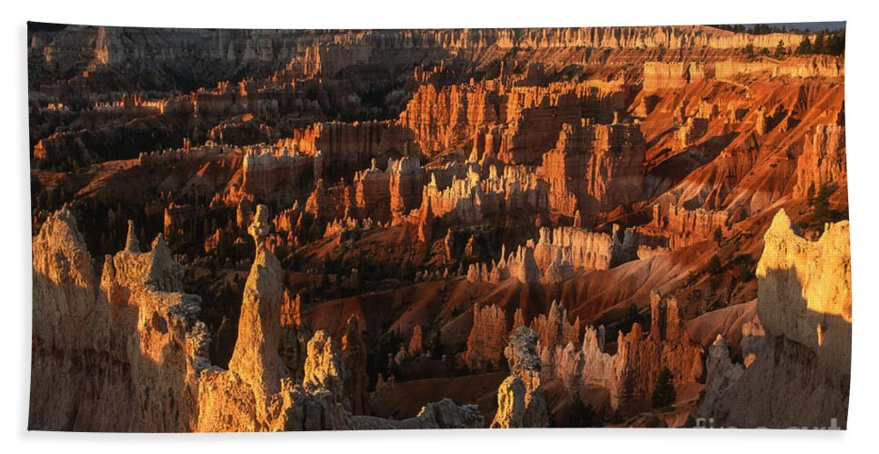Bryce Canyon Hand Towel featuring the photograph Sunrise At Bryce Canyon by Sandra Bronstein