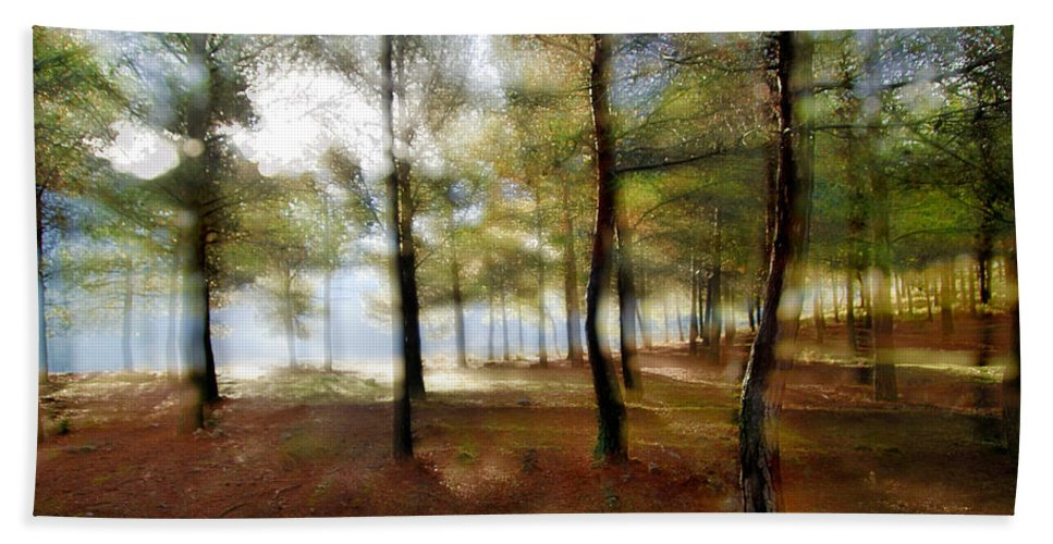 Landscape Bath Sheet featuring the photograph Sunrise At The Magic Forest by Guido Montanes Castillo