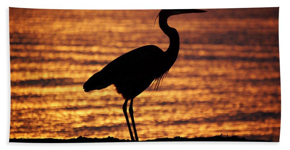 Sunrise Bath Sheet featuring the photograph Sunrise Heron by Leticia Latocki