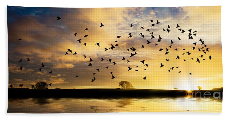 Sunrise Hand Towel featuring the photograph Birds Awaken At Sunrise by Simon Bratt Photography LRPS