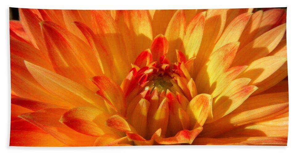 Dahlia Bath Sheet featuring the photograph Sunrise by Terri Waselchuk