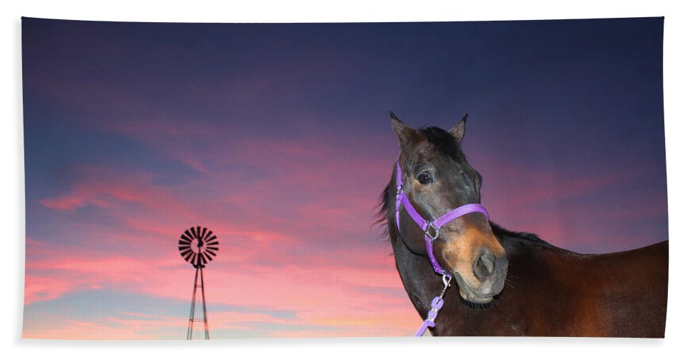 Quarterhorse Hand Towel featuring the photograph Sunset At The Farm by Laurie Larson