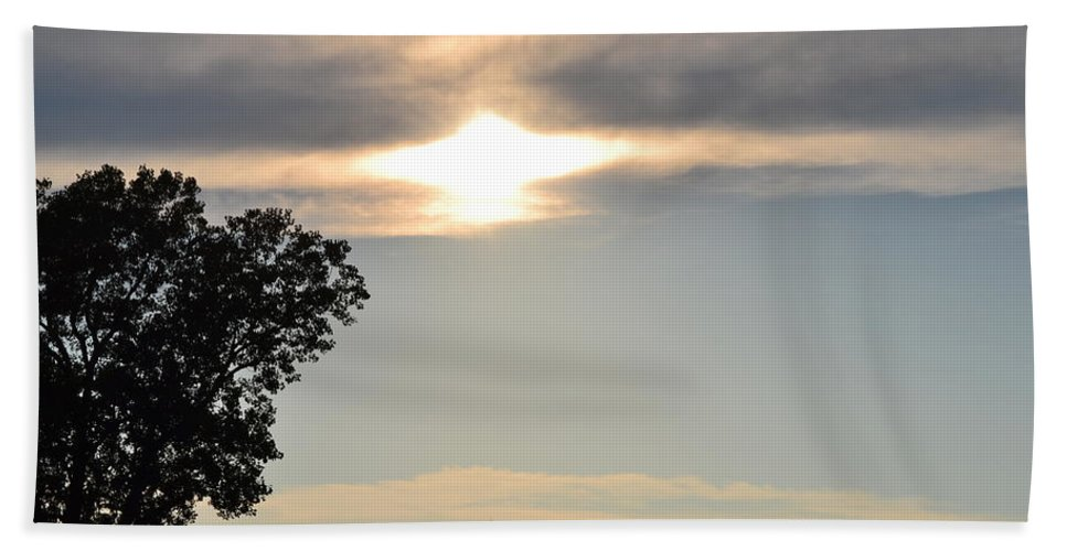 Tree Hand Towel featuring the photograph Sunset By Tree by Kim Stafford