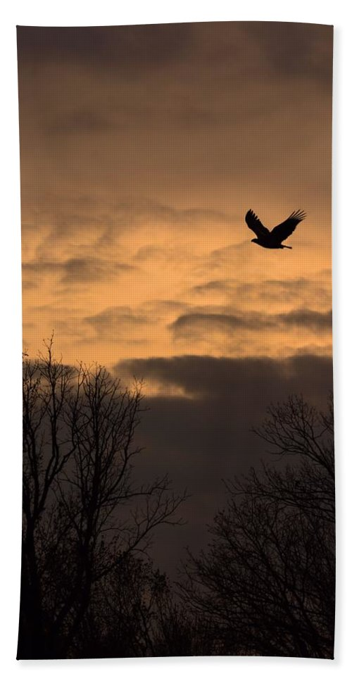 Bird Hand Towel featuring the photograph Sunset Eagle by Charles Owens