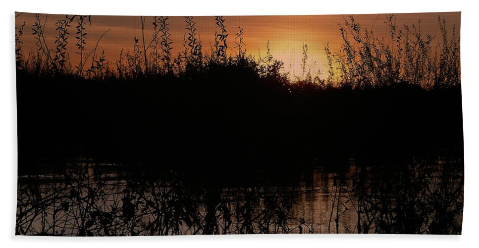 Brazil Bath Sheet featuring the digital art Sunset In The Pantenal by Carol Ailles