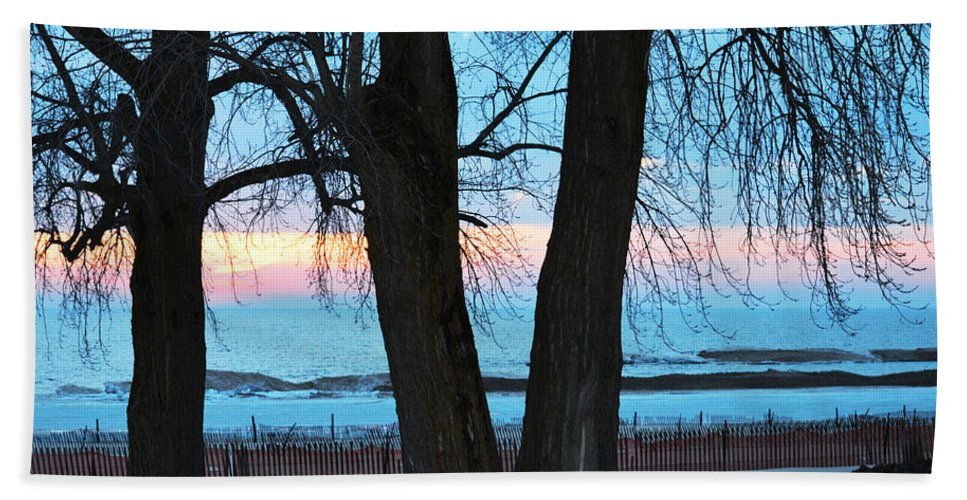 Lake Michigan Hand Towel featuring the photograph Sunset In The Trees by Linda Kerkau