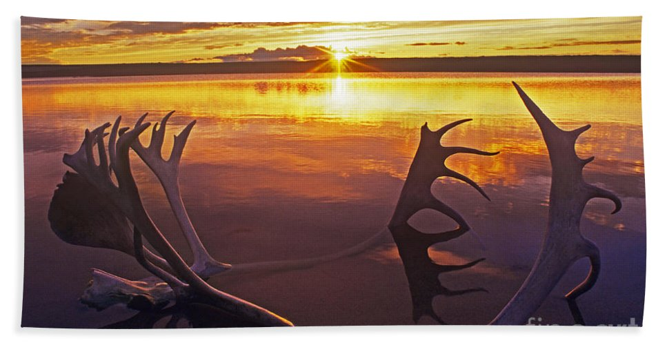 Whitefish Lake Bath Sheet featuring the photograph Sunset On Caribou Antlers In Whitefish Lake by Dave Welling