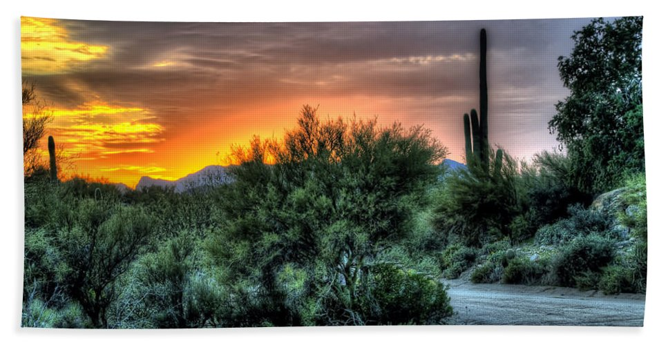 Cactus Hand Towel featuring the photograph Sunset Road by Jon Berghoff