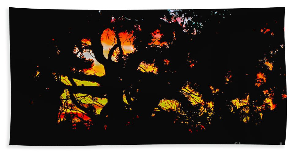 Claudia's Art Dream Bath Sheet featuring the photograph Sunset Viewed Through A Tree by Claudia Ellis