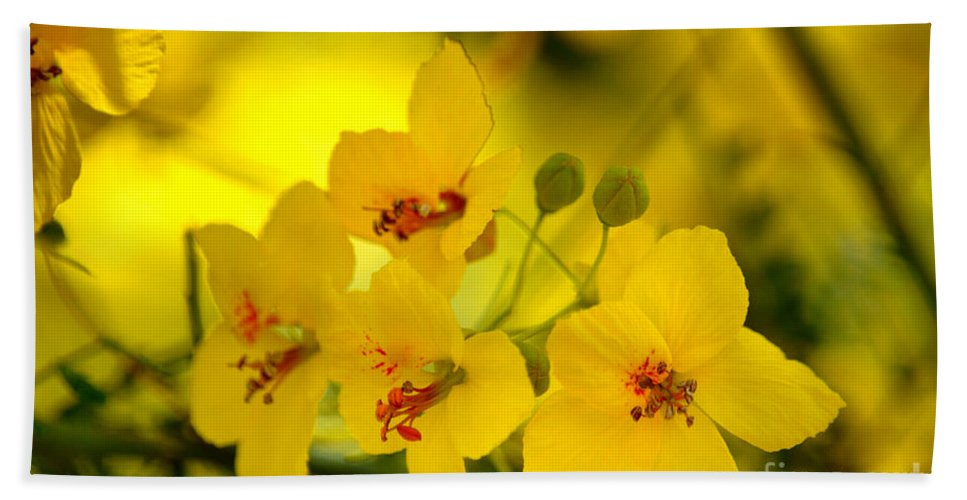 Palo Verde Tree Hand Towel featuring the photograph Sunshine Yellow by Deb Halloran