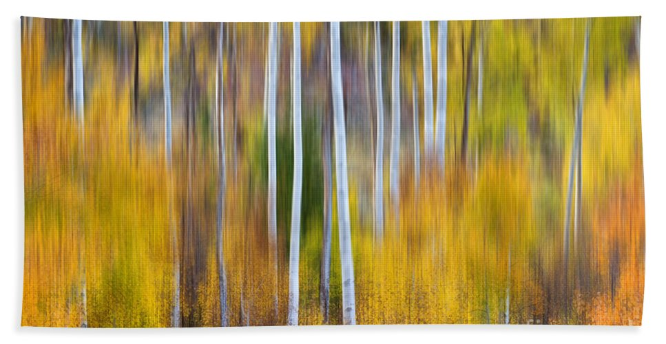Abstract Hand Towel featuring the photograph Surreal Aspen Tree Magic Abstract Art by James BO Insogna