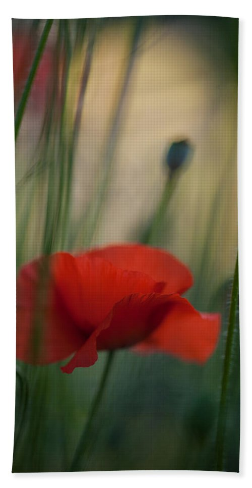 Flower Bath Sheet featuring the photograph Surrealistic Red by Mike Reid