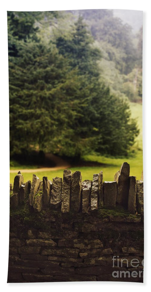 Stone Hand Towel featuring the photograph Surrounding The Pasture by Margie Hurwich