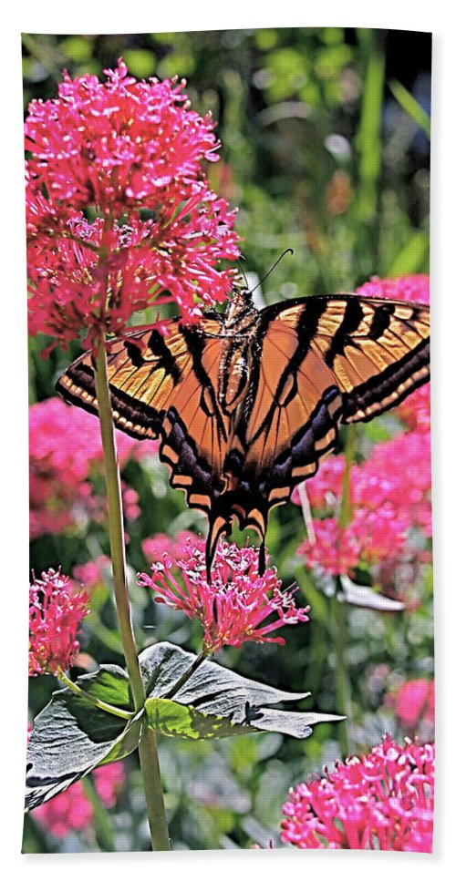 Swallowtail Bath Towel featuring the photograph Swallowtail Butterfly by Rona Black
