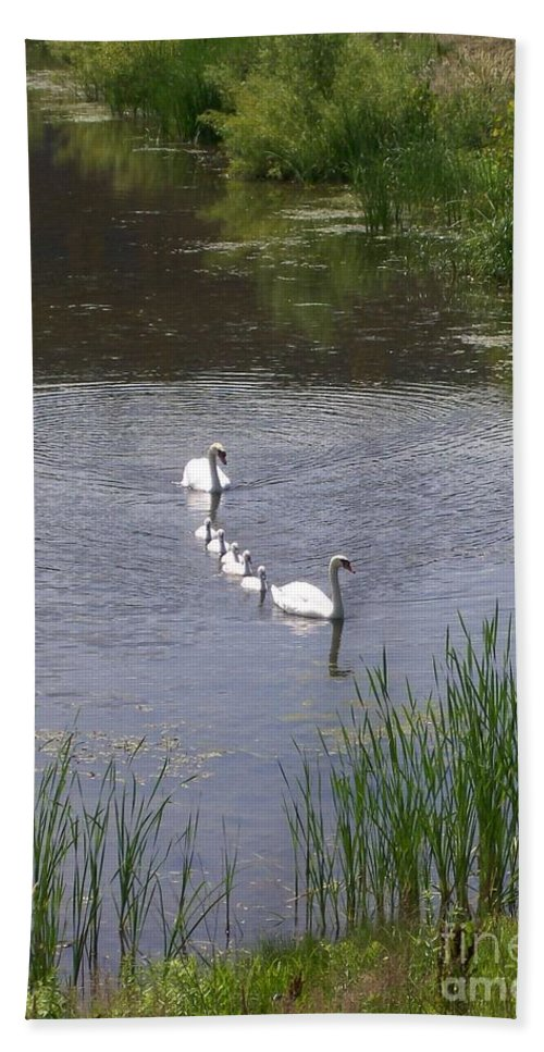 Swan Hand Towel featuring the photograph Swan Family by Laurie Eve Loftin