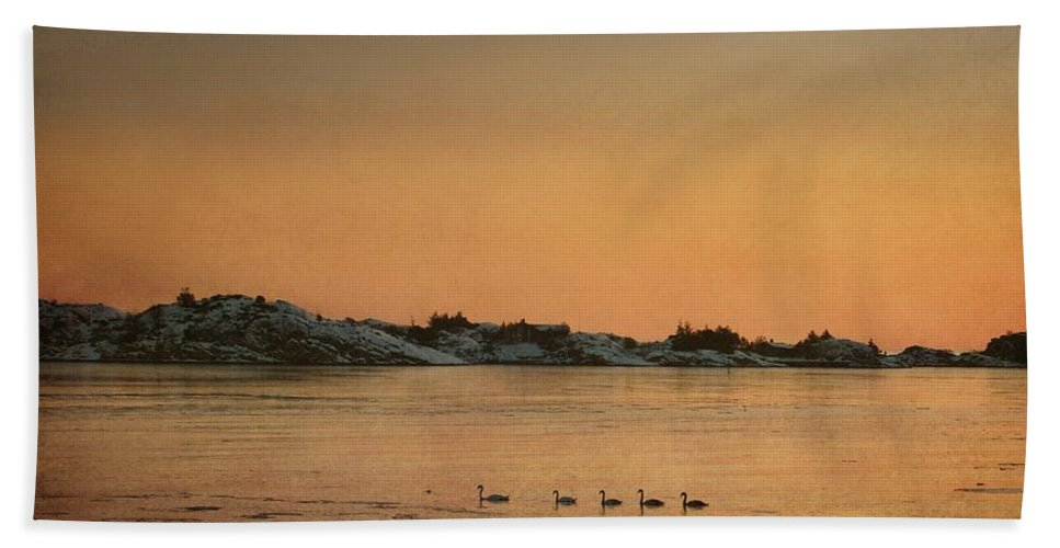 Sea Hand Towel featuring the photograph Swan Family by Sonya Kanelstrand