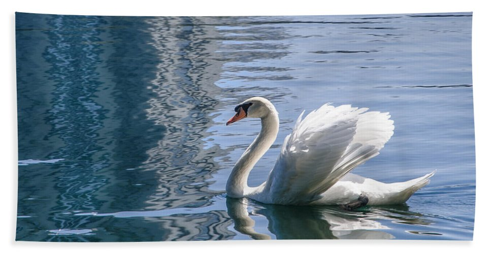 Swan Bath Sheet featuring the photograph Swan by Steven Sparks