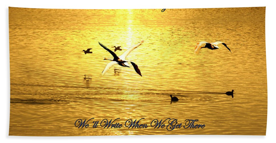 Three Swans Flying Hand Towel featuring the photograph Swans Flying Over The Water by Randall Branham