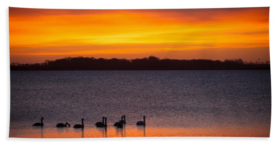 Island Of Ruegen Hand Towel featuring the photograph Swans In The Sunrise by Ralf Kaiser