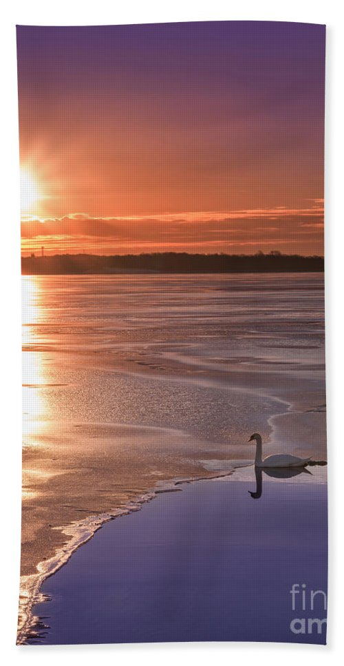 Frost Bite Hand Towel featuring the photograph Swans Sunrise by Michael Ver Sprill