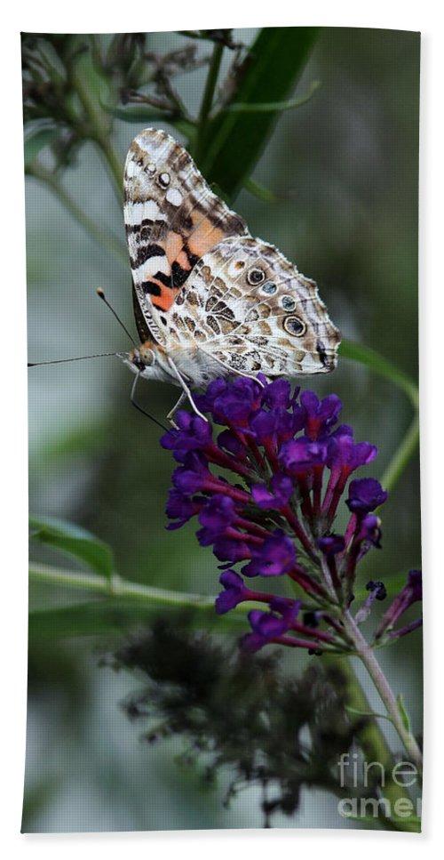 Bath Sheet featuring the photograph Sweet Nectar by Douglas Stucky