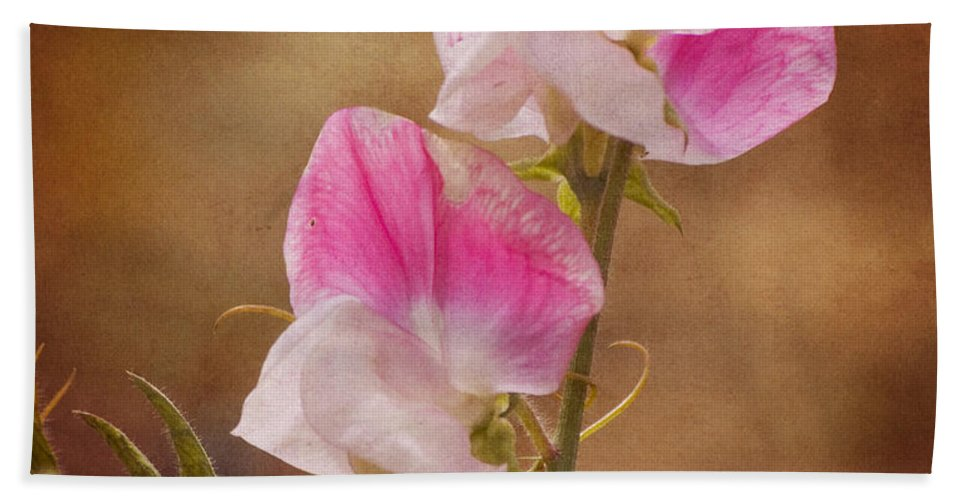 Sweet Pea Hand Towel featuring the photograph Sweet Peas by Jim And Emily Bush