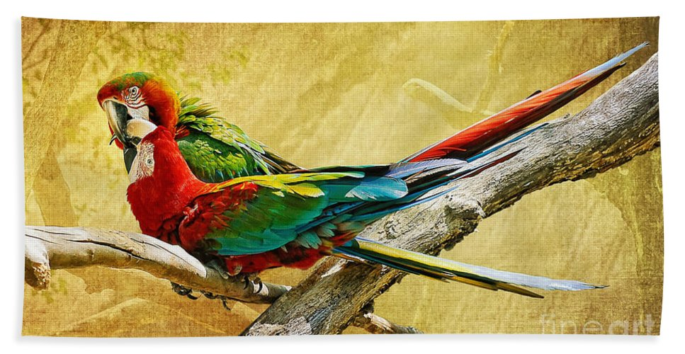 Parrot Bath Sheet featuring the photograph Sweet Sweet Love by Lois Bryan