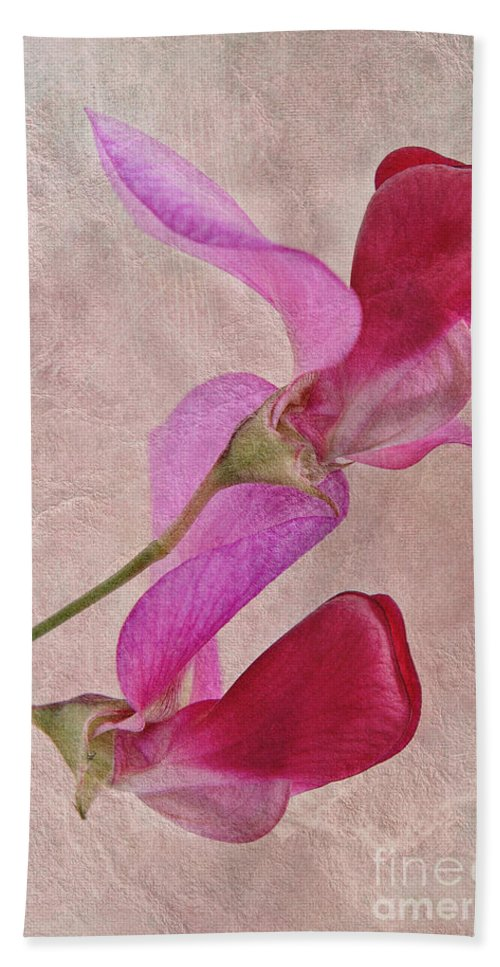Sweet Pea Hand Towel featuring the photograph Sweet Textures 2 by John Edwards
