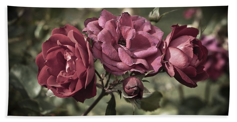 Antiqued Bath Sheet featuring the photograph Sweetly Pink by Christi Kraft