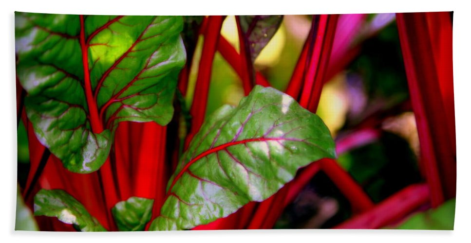 Kettuce Hand Towel featuring the photograph Swiss Chard Forest by Karen Wiles