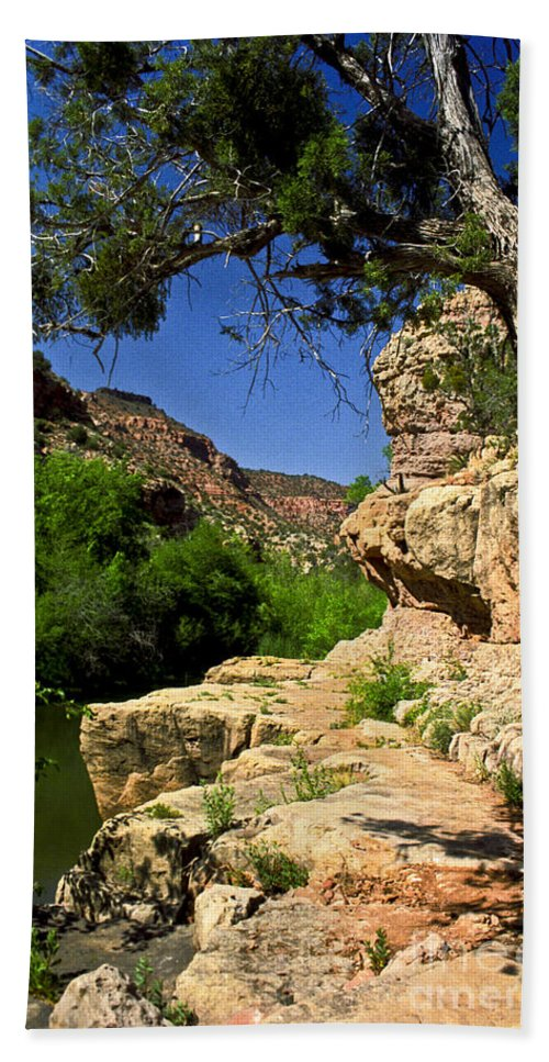 Arizona Bath Towel featuring the photograph Sycamore Canyon by Kathy McClure