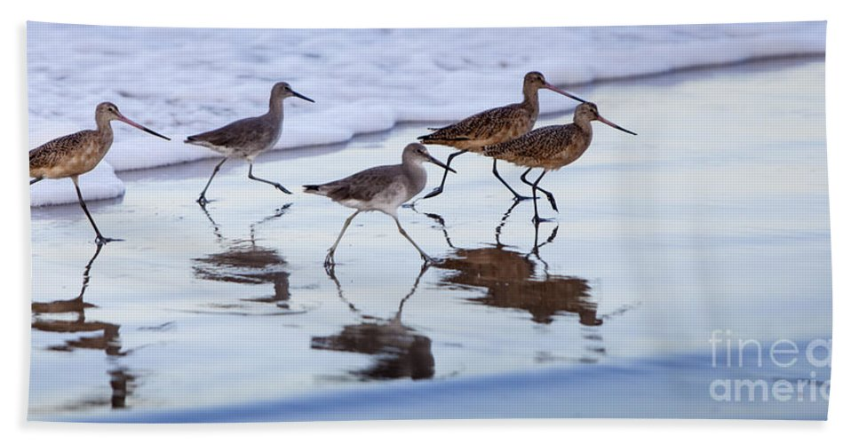 Dowitchers Hand Towel featuring the photograph Take It In Stride by David Millenheft