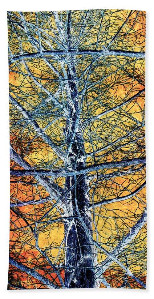 Tree Bath Sheet featuring the photograph Tangled Web 2 by Shawna Rowe