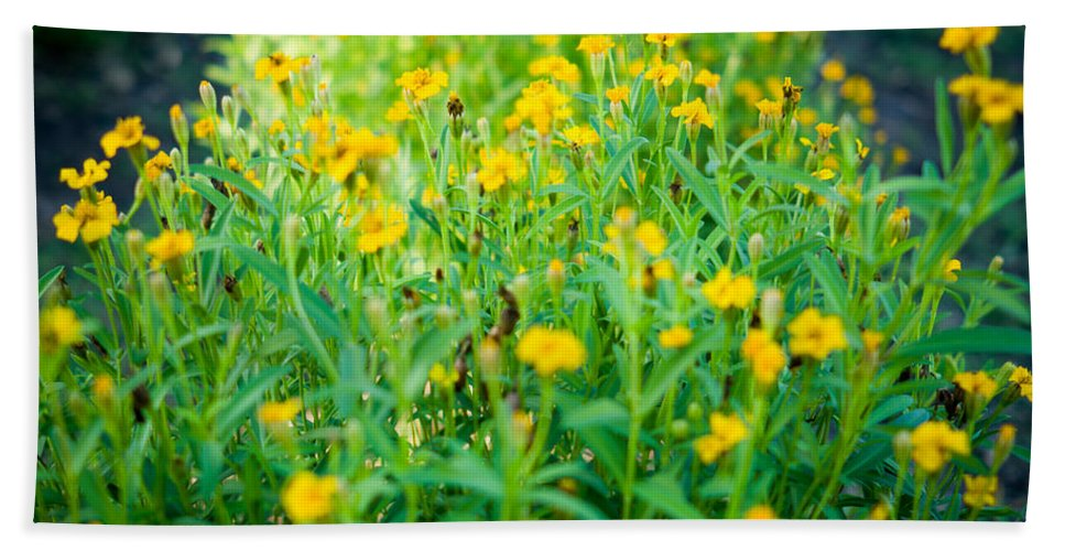 Herbs Bath Sheet featuring the photograph Tarragon by Ferry Zievinger
