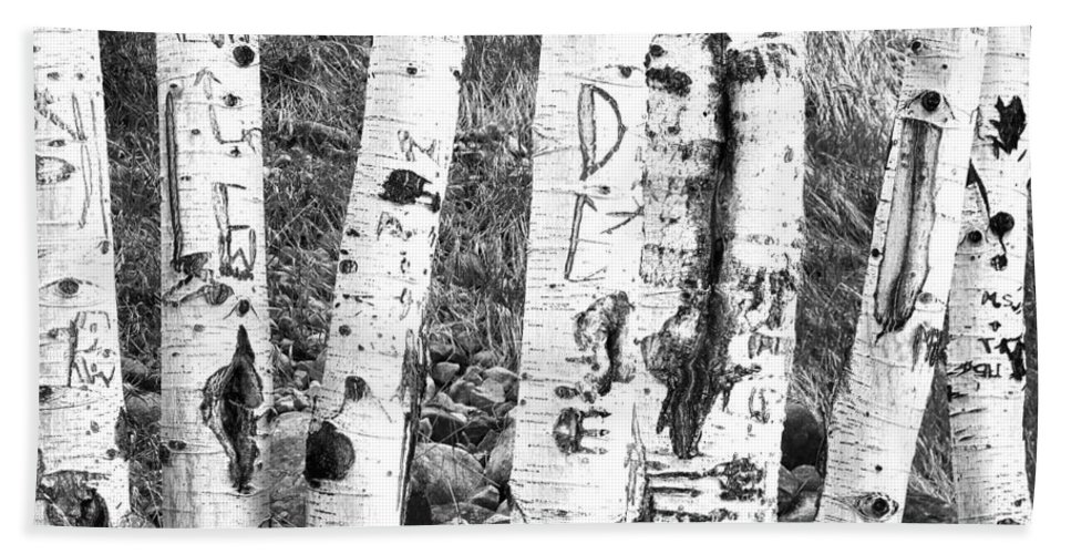 Birch Tree Hand Towel featuring the photograph Tattoo Trees by Rebecca Margraf