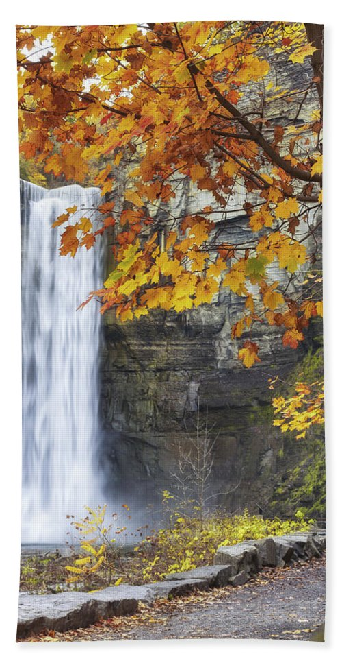 Michele Hand Towel featuring the photograph Taughannock Falls And Maple by Michele Steffey
