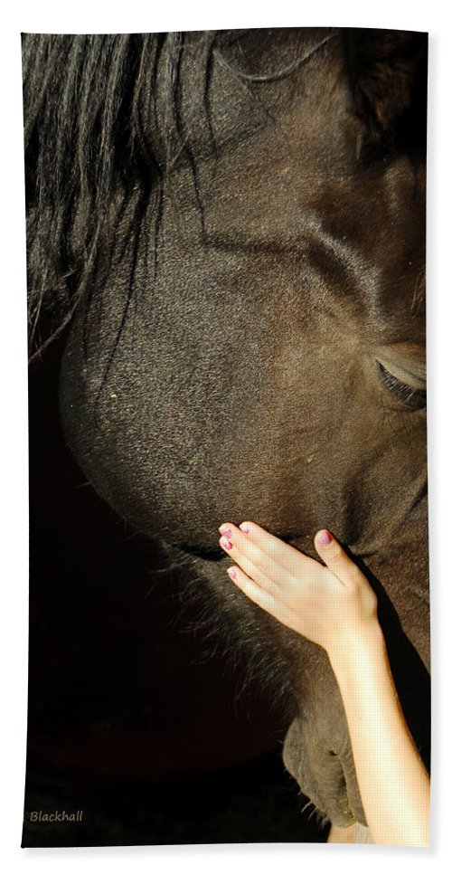 Horse Bath Towel featuring the photograph Tenderness by Donna Blackhall